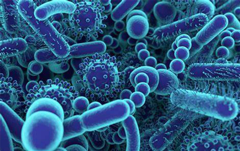 Disinfection and Farm Hygiene